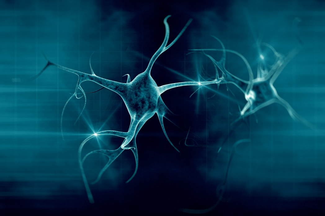 New Insights Into Motor Neuron Degeneration and Potential ALS Therapies