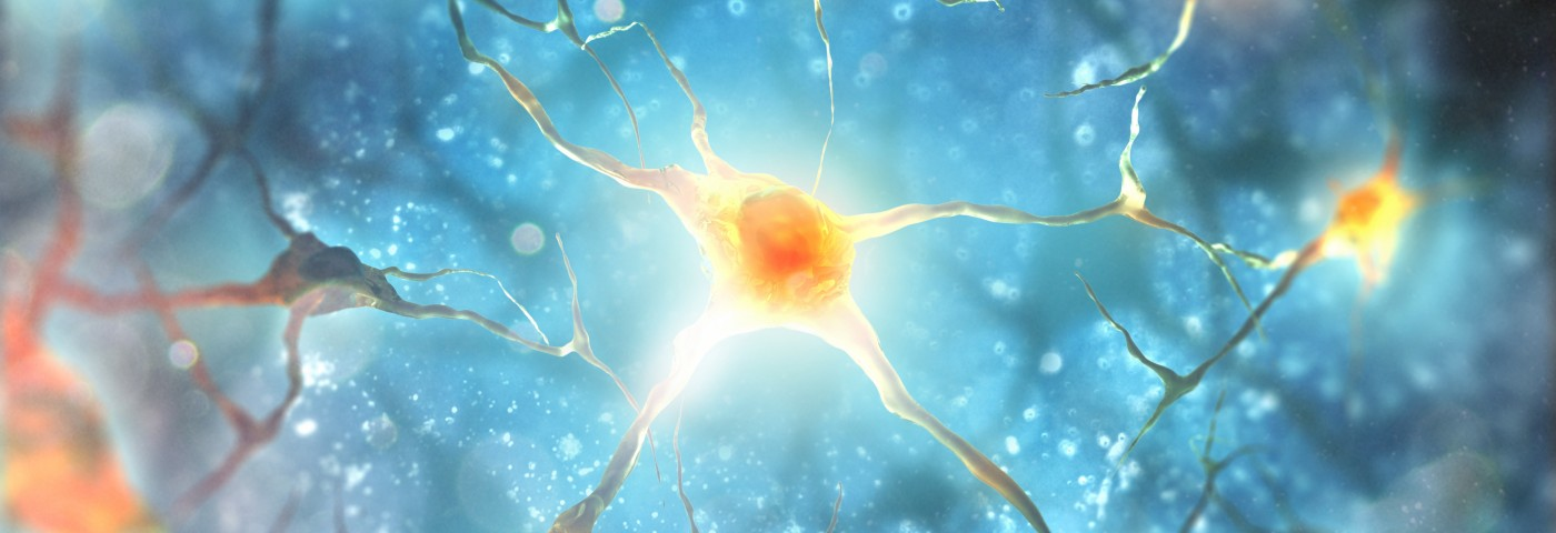 ALS Study Finds Higher Than Usual Levels of Axon 'Repellent' Protein in Patients' Motor Cortex