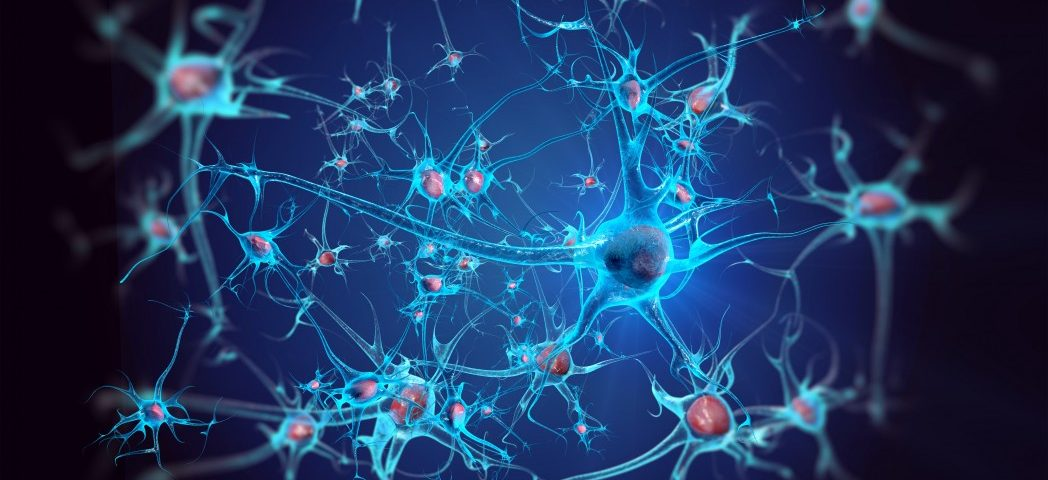 Researchers Identify Culprit in ALS Nerve Cell Damage, Potentially Leading to New Therapies