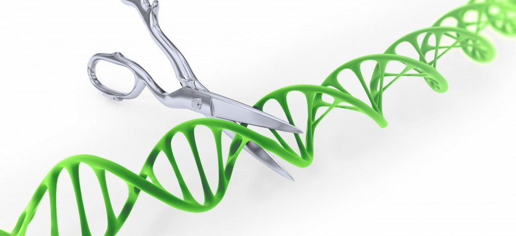 Genetic Splicing Tool Defective in ALS and SMA, Possibly Offering Clues to Treatment
