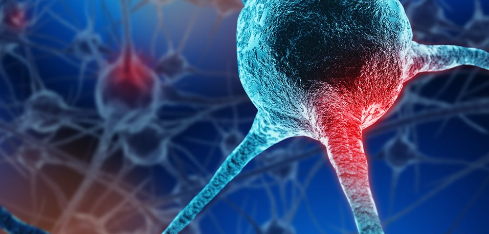 Pathway of ALS-linked Protein Into, Inside Nerve Cells More Complex Than Expected