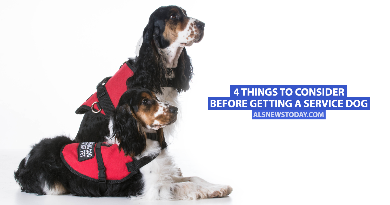 how to acquire a service dog