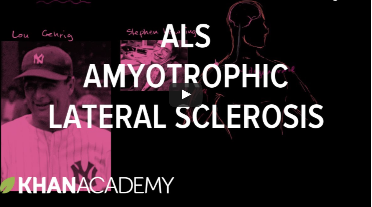 Explaining Amyotrophic Lateral Sclerosis - ALS News Today