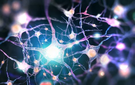 Researchers Obtain Further Insight into Protein Whose Mutations Are Linked to ALS