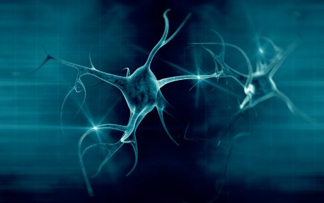 ALS-causative Mutations Directly Affect Sensory Nerves' Growth and Stress Response, Preclinical Study Shows