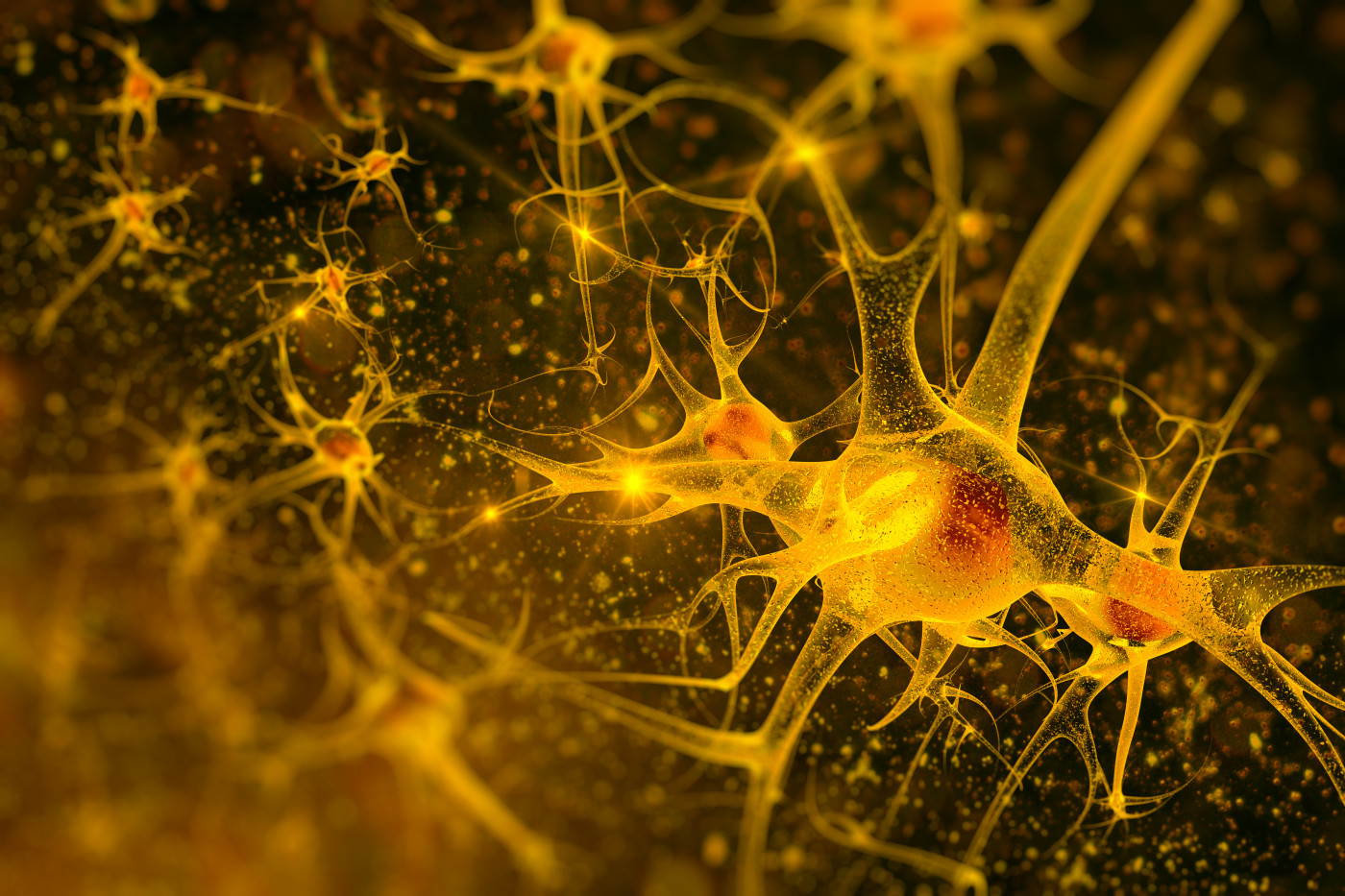 Stem cell treatment in ALS.