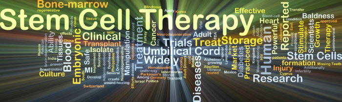 Stem Cell Therapy Safe in ALS Patients