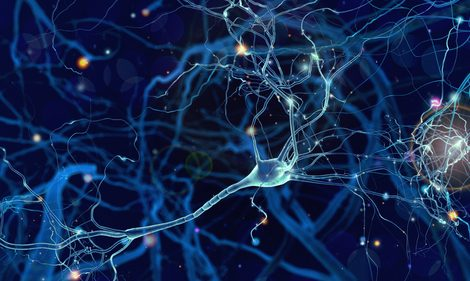 Processes Driving FUS Proteins to Clump in ALS and Common Dementia Described in Study