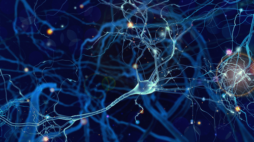 Mouse Study Changes Perspective on Brain Immune Cells' Role in ALS Progression