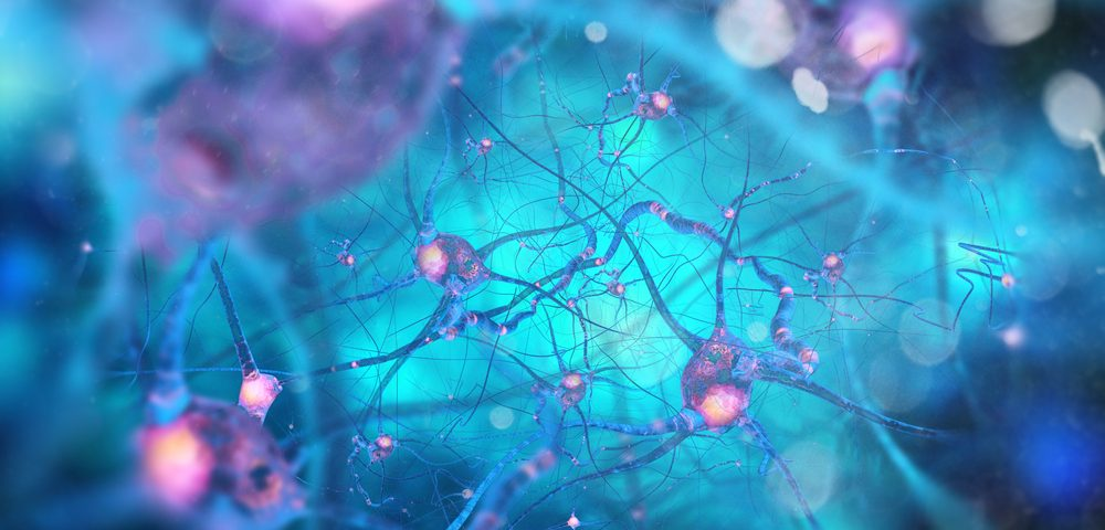 Nerve Cell Death Signaling May Hold Key to Treating ALS, Other Diseases, Study Finds