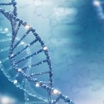 gene variants and ALS onset