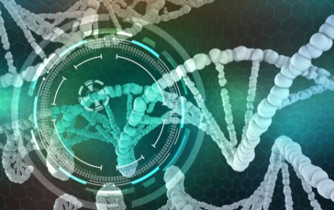 Gene Therapy That Lowered SOD1 Protein in Primates Could Be Effective in ALS, Study Suggests