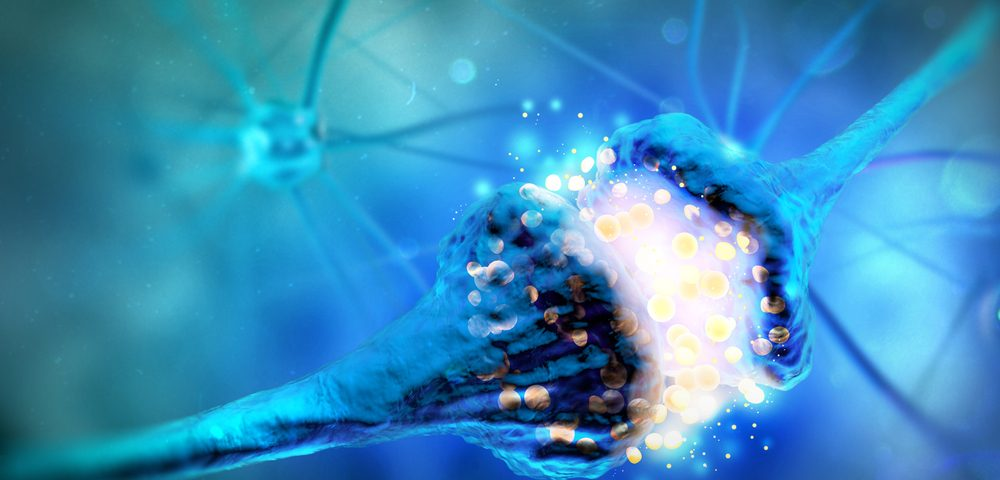 Nerve-protecting Cells Hold Potential in Development of ALS Therapies