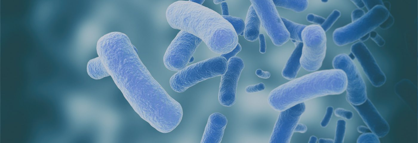 Study Probes Gut Microbiome Alterations, Probiotics in ALS Patients