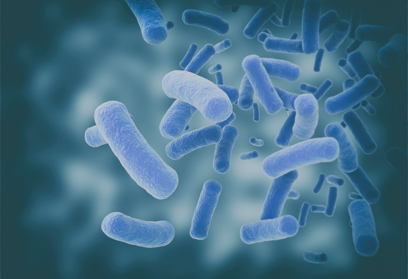 ALS Study Finds Bacteria, Fungi in Central Nervous System of