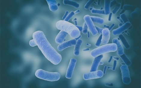 Bacteria and Fungi Found in Central Nervous System of ALS Patients, Study Reports