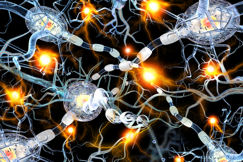 Researchers Uncover HSP90 Mechanism That May Help Explain Motor Nerve Death