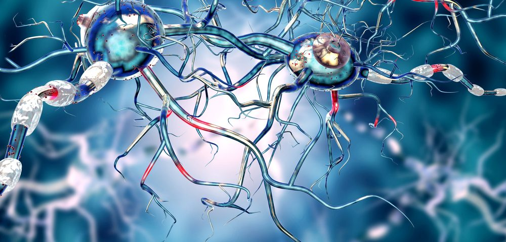 'Bar Code' Identifies Nervous System Cells That May Be Key to Treating ALS