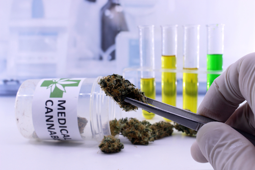 Cannabis-based Sativex May Help Reduce Spasticity in ALS Patients, Study Suggests