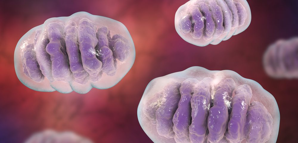 #MDA2021 – Rare WWOX Mutations in Patients Affect Mitochondria of Cells