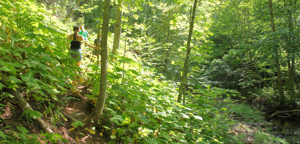 Unequipped / ALS News Today / Photo of Kristin's family hiking on a trail surrounded by dense greenery.